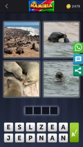 4 pics 1 Word June 30 2019 answer Seal