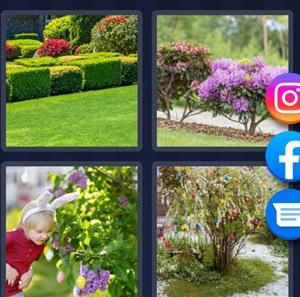 4 Pics 1 Word - Bush