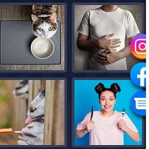 4 Pics 1 Word May 28 2021