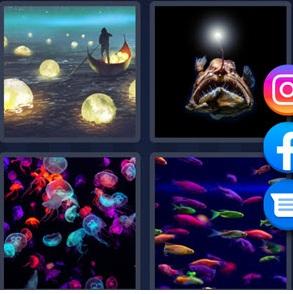 4 Pics 1 Word bonus puzzle June 8 2021