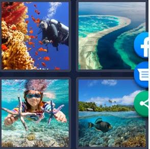 4 Pics 1 Word bonus puzzle june 22 2021